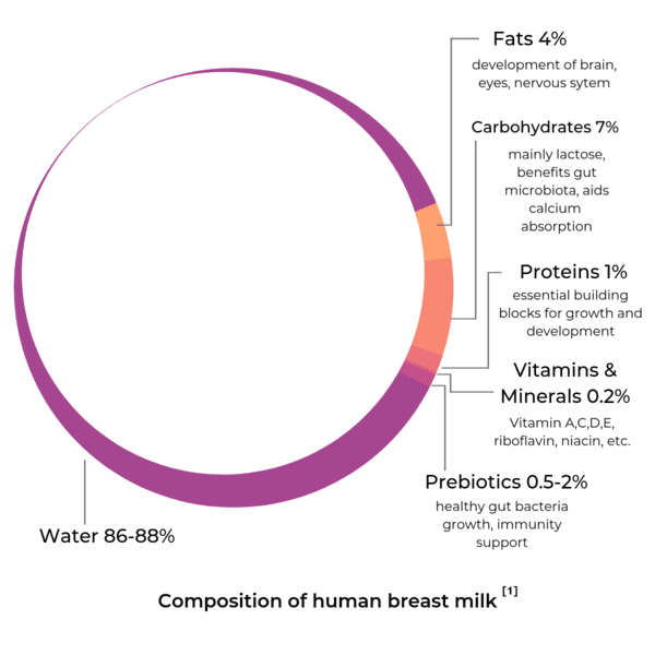 composition of human breast milk